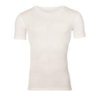 Pánské funkční tričko Merino 210 přírodní